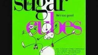 Motorcrash by The Sugarcubes!!!