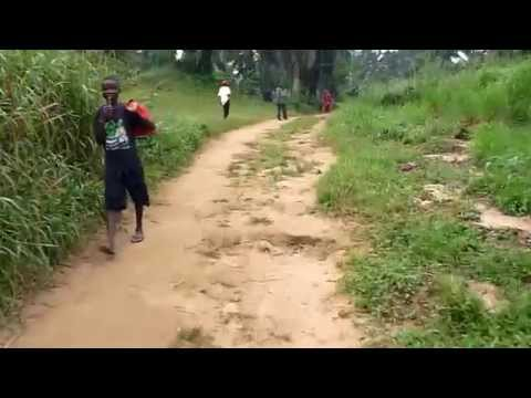 A short walk in Djolu, DR Congo
