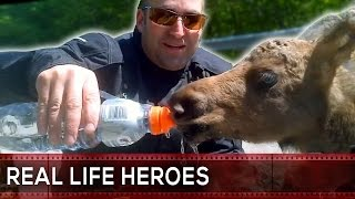 Animal Rescue Compilation #7 REAL LIFE HEROES