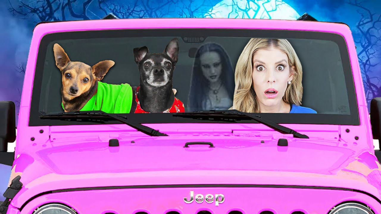 """Dogs 24 OVERNIGHT IN Rebecca""""s New Pink Jeep Challenge"""