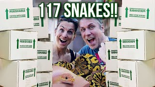 UNBOXING 117 SNAKES!! | BRIAN BARCZYK