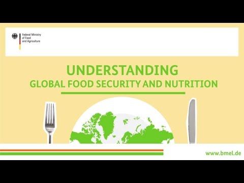 """Understanding global food security and nutrition"""