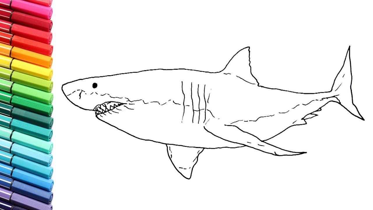 how to draw great white shark monster from the sea