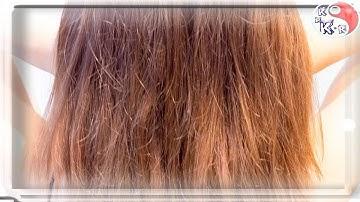 최신 새:손상된 머리카락을 복원하는 방법. KpKr