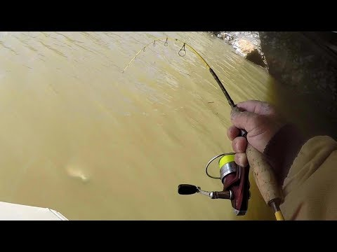 Pulling SLABS Out Of Muddy Water! Crappie Fishing Tips For Extremely Muddy Water