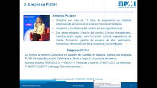 Webinar Reunión de socios Mayo 2016  PMI Madrid Spain Chapter
