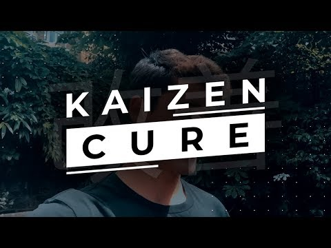 How To Network With High Level People (Kaizen Cure Preview)