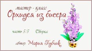 МК Орхидея из бисера ч 5/5 сборка