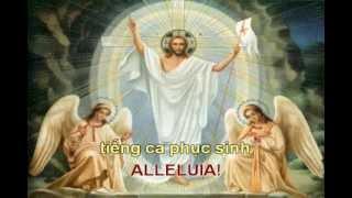 Chúa sống lại rồi -tinmung.net