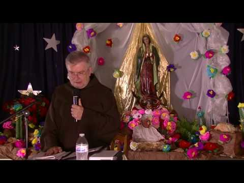 Introduction to the Divine Will - Luisa Piccarreta by Fr. Robert Young OFM