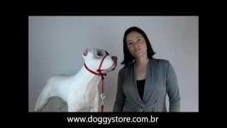 Coleira Cabresto Anti-Puxão para Cães - Como Funciona