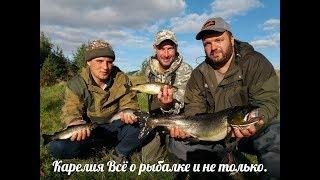 Сентябрь, рыбалка с гостями  И где лучше река или озеро