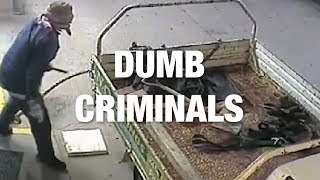Criminals Guilty of Being Dumb