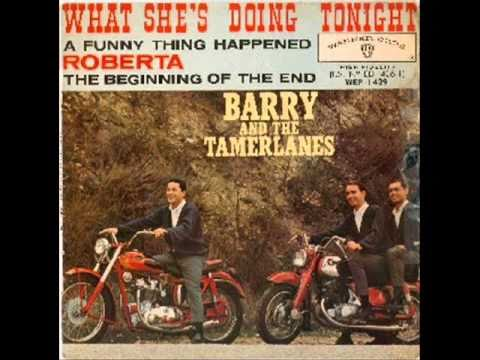 Barry & the Tamerlanes -