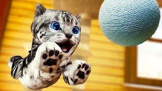 Играем в СИМУЛЯТОР КОШКИ / Приключение котят в мульт игре для детей #ПУРУМЧАТА