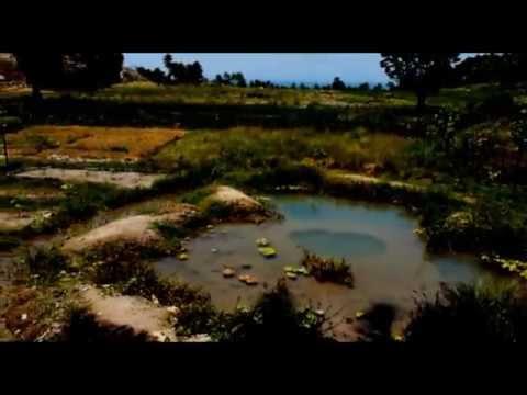 Naterra East Timor 2011