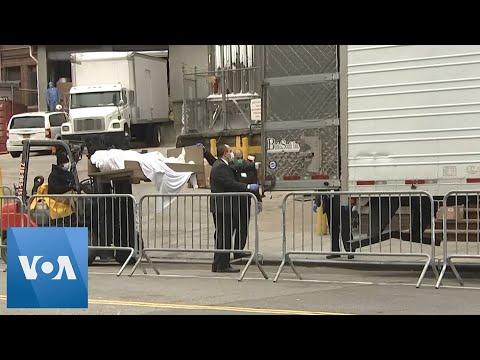 New York City: Dead Moved Into Refrigerator Trucks