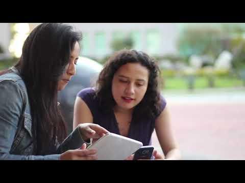 Sistema de administración escolar Saeko