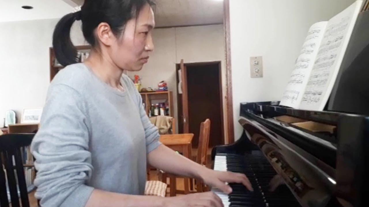パンピアノ 収入