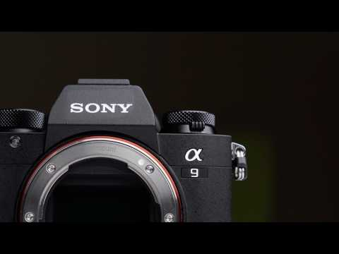 Sony A9 Speed Review: It's HERE!!!!