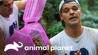 frank-libera-animales-y-habla-sobre-la-madre-de-sus-hijos-wild-frank-al-rescate-animal-planet