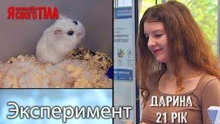 Эксперимент - Домашние животные