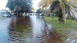 Flooding in New Port Richey, FL - Pasco County - Park Lake Estates