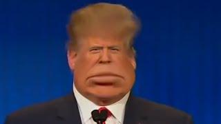 Donald Trump Makes America Again