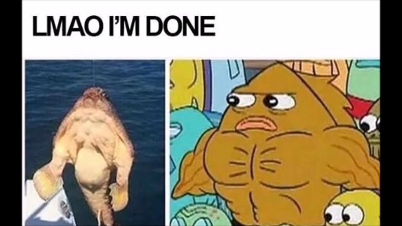 Funny Clean Memes Spongebob : Clean spongebob memes pt youtube