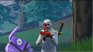 I AM THE NEW FORTNITE HITMAN OR JUST A BOT