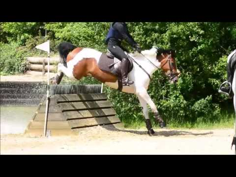 XC schooling at Aylesford