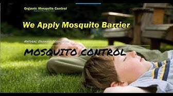 Best Mosquito Control Raleigh NC