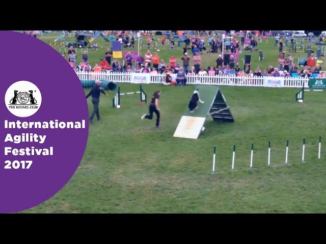 Olympia Quarter Final Large - G3-5 Novice - Part 3 | International Agility Festival 2017