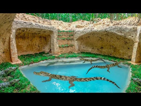 Dig To Build Top Safety Underground Crocodile Pond And Underground Crocodile Habitat