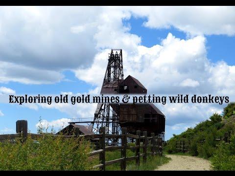 Exploring An Old Colorado Gold Mine Head