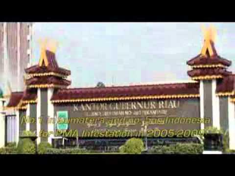 Riau Province (English Version)
