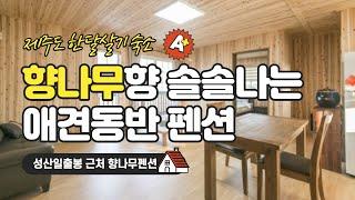 98.97 제주도한달살기_성산일출봉 근처 향나무펜션