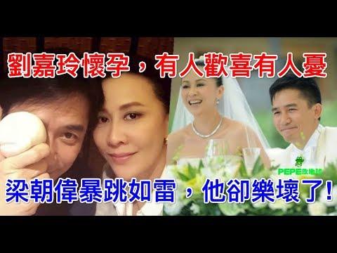 劉嘉玲懷孕,有人歡喜有人憂,梁朝偉暴跳如雷,他卻樂壞了!