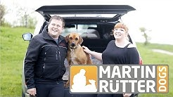 Hundeschule Martin Rütter Dogs Berlin Berlin