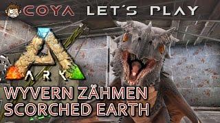 ARK SCORCHED EARTH • Wyvern zähmen • Baby Drachen • ARK Deutsch • German