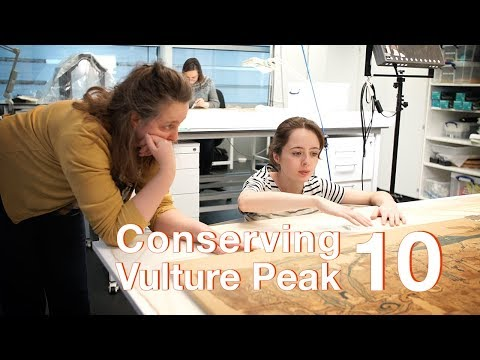 Conserving Vulture Peak | Episode 10: Stitching the support fabric