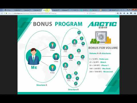 Arctic coin review