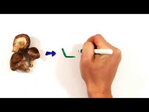 Ячневая крупа: из какого злака, польза и вред и как варить
