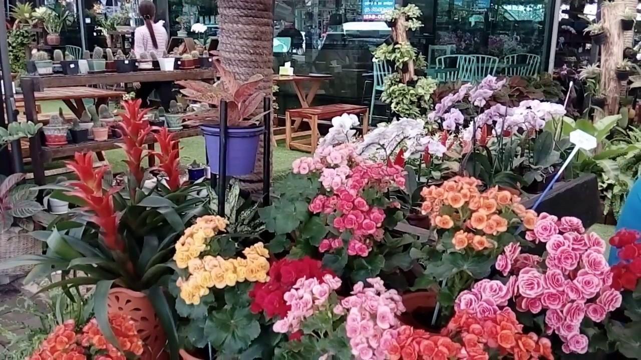 Паттайя купить букет цветов, составить свадебный букет