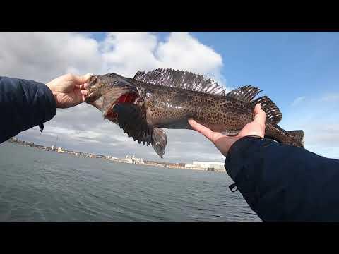 Fishing Vancouver Island Victoria (Breakwater)