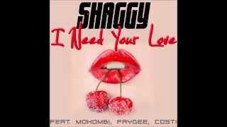 Shaggy I Need Your Love.mp3