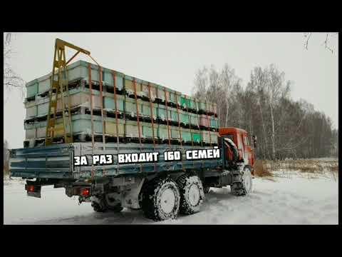 Промышленное пчеловодство Пасека Матюшкиных. Кемерово 2018 - 2019