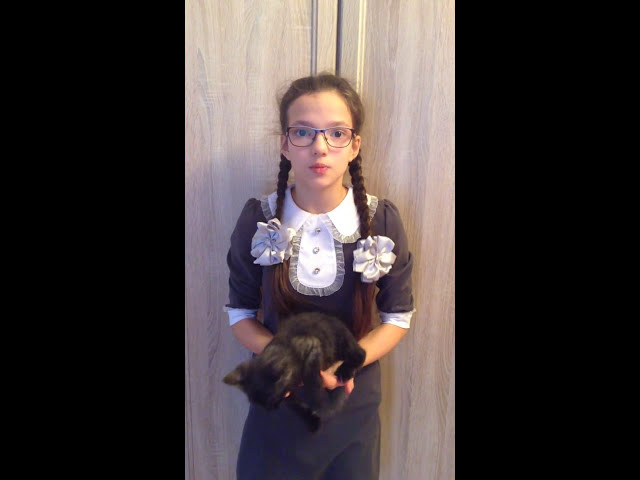 Изображение предпросмотра прочтения – АннаСилакова читает произведение «Кошка и Соловей» И.А.Крылова