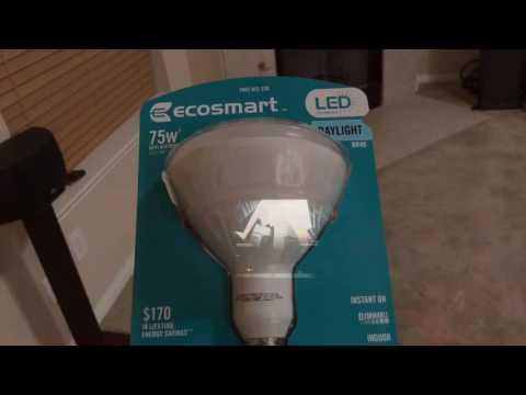 Ecosmart BR40 LED Lights