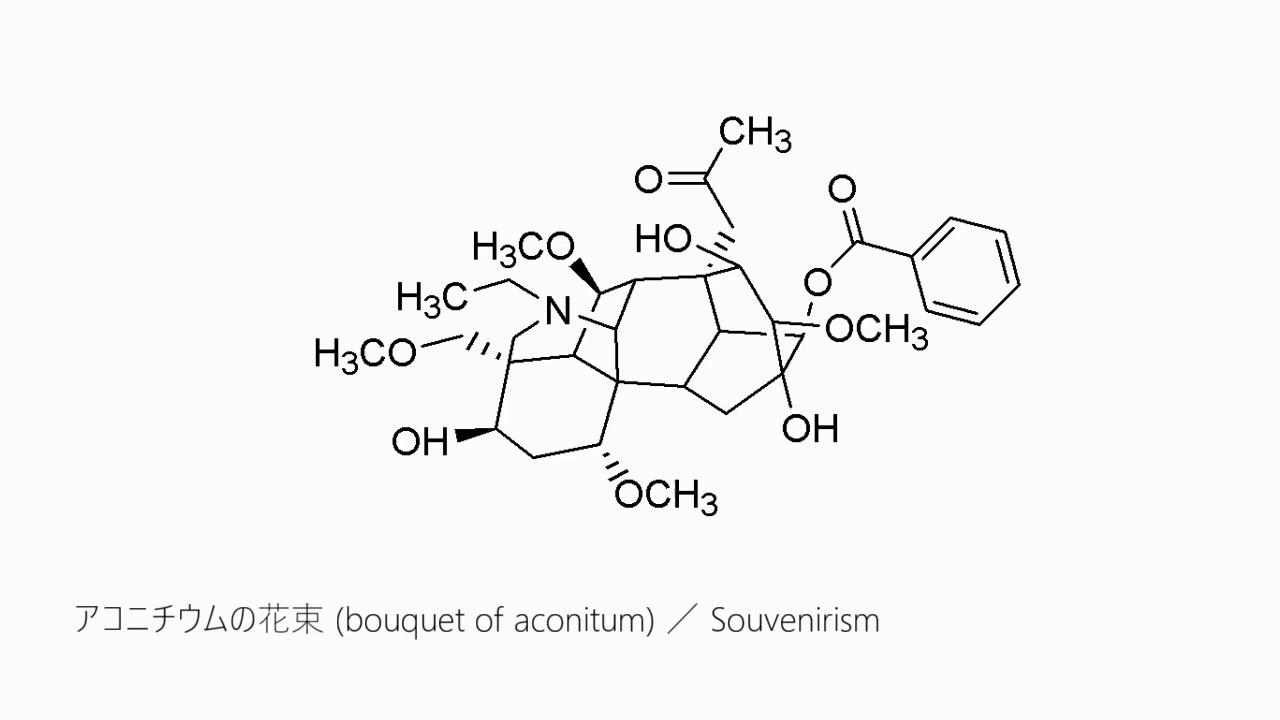アコニチウムの花束/Souvenirism